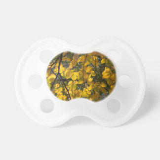 Yellow and green autumn leaves pacifier