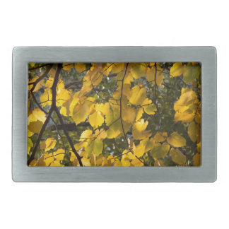 Yellow and green autumn leaves rectangular belt buckles