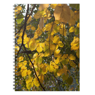 Yellow and green autumn leaves spiral notebook