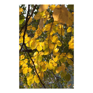 Yellow and green autumn leaves stationery