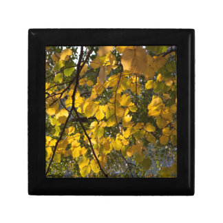 Yellow and green autumn leaves trinket box