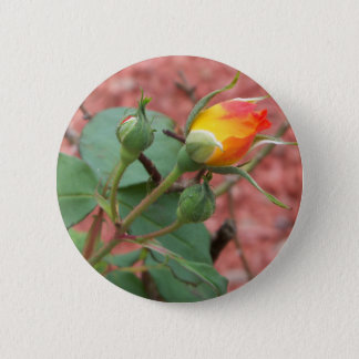 yellow and orange rose bud 2 inch round button