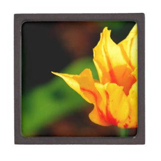 Yellow and Orange Tulip Premium Trinket Boxes