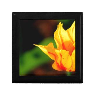 Yellow and Orange Tulip Trinket Boxes