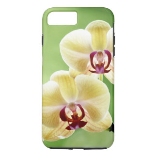 Yellow and Pink Orchid iPhone 8 Plus/7 Plus Case