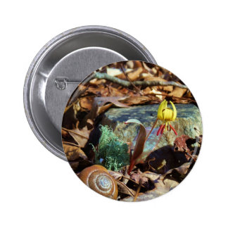 Yellow and Plum Trout Lily and Snail Shell Pinback Button