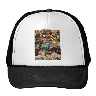 Yellow and Plum Trout Lily and Snail Shell Trucker Hats