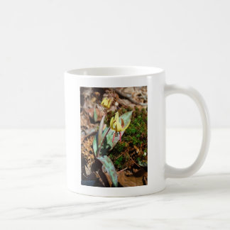 Yellow and Plum Trout Lily Coffee Mug