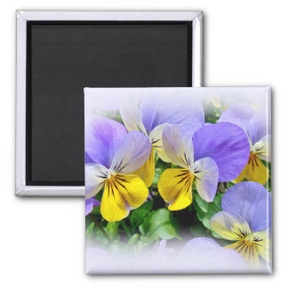 Yellow and Purple Pansies Magnet