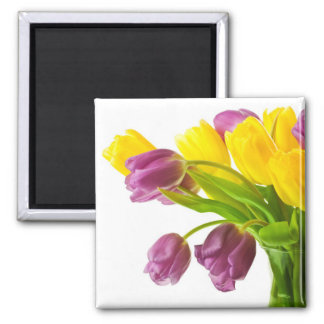 Yellow and Purple Tulips Background Customized Magnet