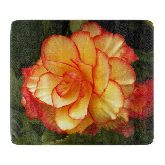 Yellow and Red Begonia Floral Boards