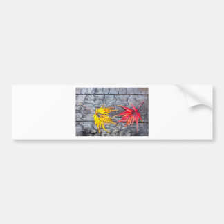 Yellow and red maple leaf on black burnt wood bumper sticker