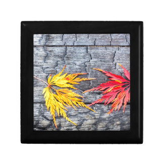 Yellow and red maple leaf on black burnt wood gift box