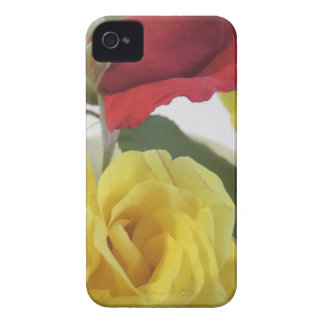 Yellow and Red Roses iPhone 4 Cover