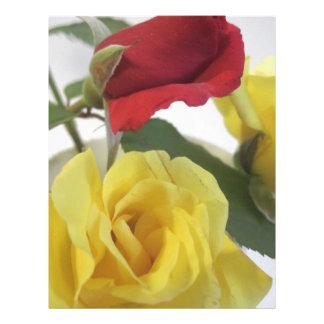 Yellow and Red Roses Letterhead