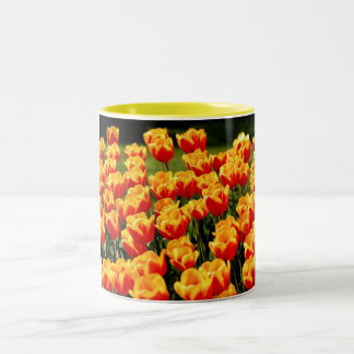 Yellow and red tulips in springtime Two-Tone coffee mug