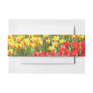 Yellow and Red Tulips Invitation Belly Band
