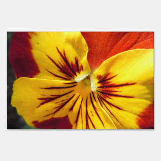 Yellow and Rusty Red Pansy Sign