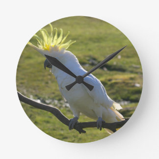Yellow and White Cockatoo Parrot Wall Clock