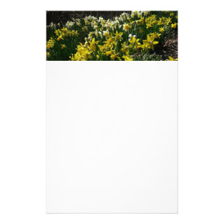 Yellow and White Daffodils Spring Flowers Customized Stationery