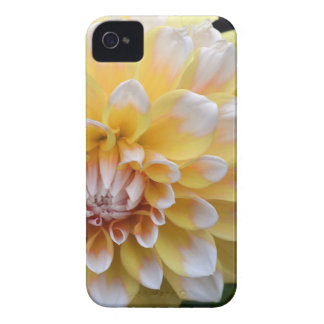 Yellow and White Dahlia iPhone 4 Case
