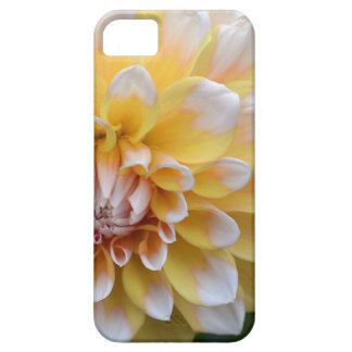 Yellow and White Dahlia iPhone 5 Cases