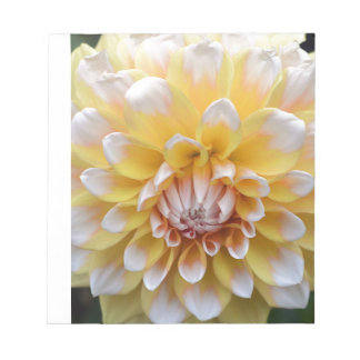Yellow and White Dahlia Notepad