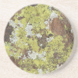Yellow and White Lichen on Sandstone Natural Camo Coasters