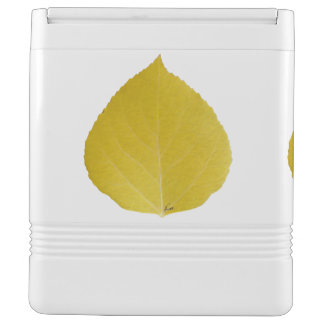 Yellow Aspen Leaf #5
