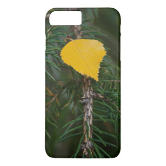 Yellow Aspen Leave on Evergreen Branch Photograph Case-Mate iPhone Case