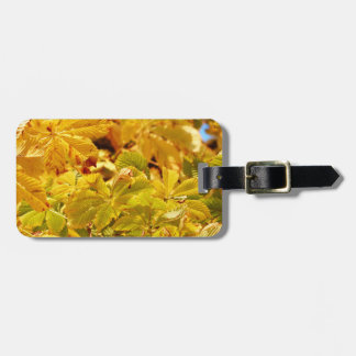 Yellow autumn color love luggage tag