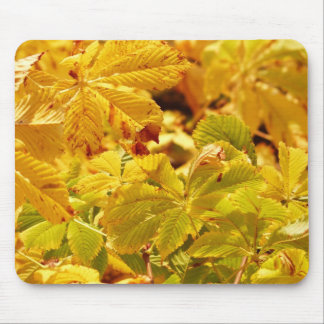 Yellow autumn color love mouse pad
