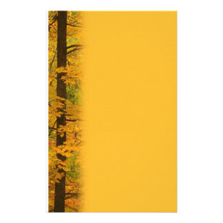 Yellow Autumn Forest Wedding Stationery