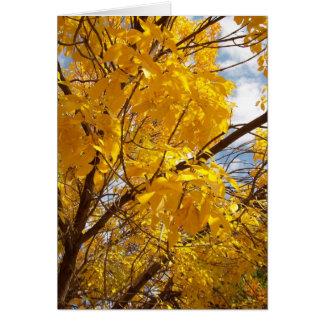 Yellow Autumn Majesty Card