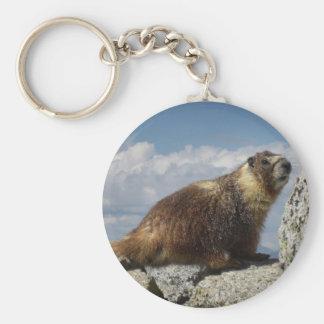 Yellow Bellied Marmot in Yosemite Basic Round Button Keychain