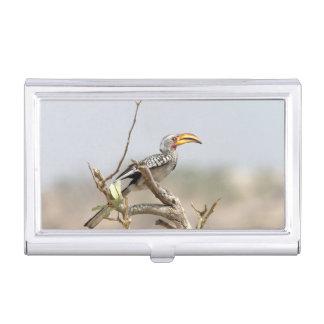 Yellow billed hornbill business card cases