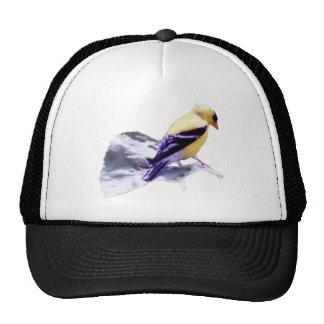 Yellow Bird Mesh Hats