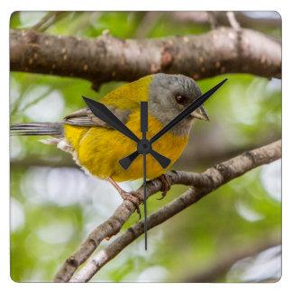 Yellow Bird Square Wall Clock