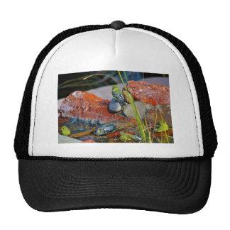 Yellow birds mesh hats