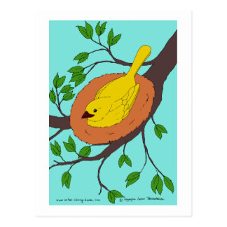 Yellow Bird's Nest Postcard