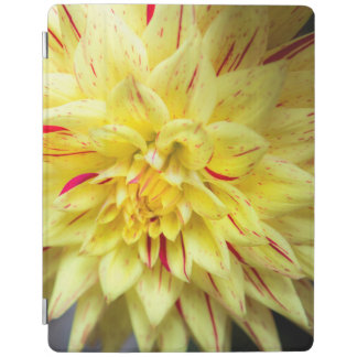 Yellow Bloom iPad Cover