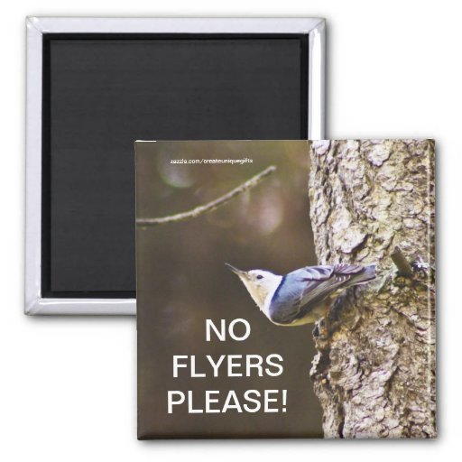 Yellow & Blue bird No Flyers Please Magnet