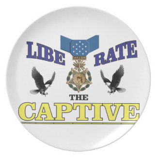 yellow blue captive medal dinner plates