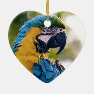 Yellow Blue Macaw Parrot Ceramic Heart Ornament