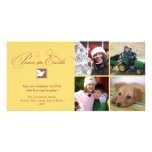 Yellow brown dove peace on earth holiday greeting photo greeting card