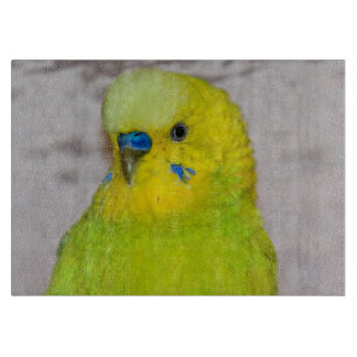 Yellow Budgie Glass Cutting Board