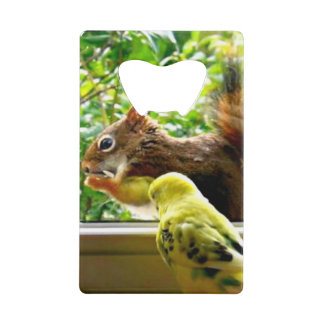 Yellow Budgie Watching Nibbling Squirrel Credit Card Bottle Opener