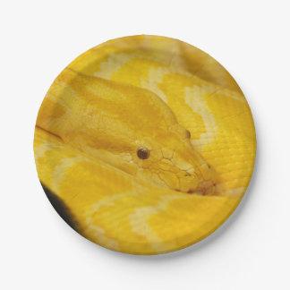 Yellow Burmese Python Paper Plate