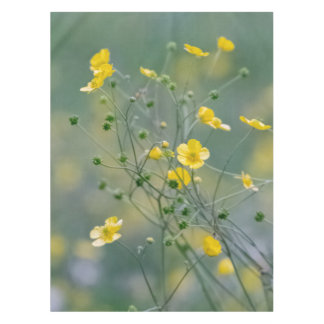 Yellow buttercups tablecloth