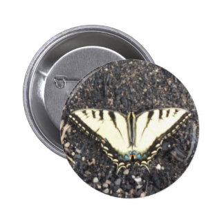 Yellow Butterfly Pin